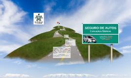 Copy of SEGURO DE AUTOMOVILES