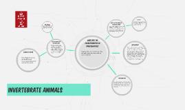 What are the characteristics of invertebrates?