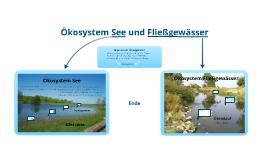 Ökosystem See und Fließgewässer