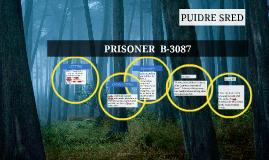 Prisoner b-3087 pdf free download free