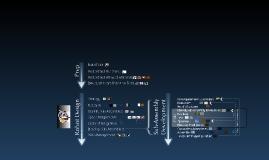 Copy of Our Robot Design Process