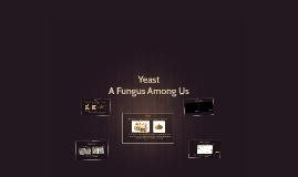 Yeast Beast