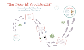 """The Deer of Providencia"""