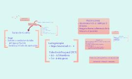 Copy of Educacion Carro de paro