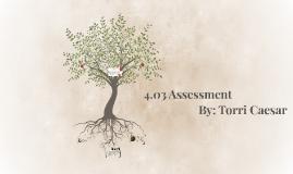 4.03 Assessment