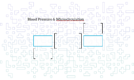 Blood Pressure & Microcirculation