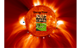 Copy of Energy Flow