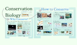 Interactions 6: Conservation Biology