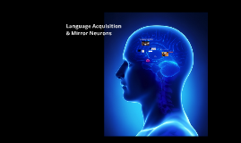 Language Acquisition and Mirror Neurons