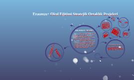 Erasmus+ Okul Eğitimi Stratejik Ortaklık Projeleri