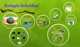 Copy of Ecología Individual