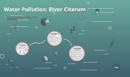 Water Pollution: River Citarum