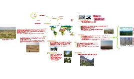 Biosféra, vegetační oblasti světa