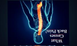 How Intervertebral Discs Cause pain