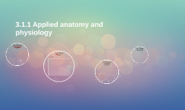 3.1.1 Applied anatomy and physiology