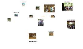 Copy of fotos