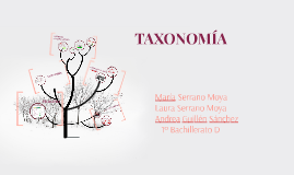 Copy of TAXONOMÍA