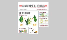 CANNABIS EN EPILPSIA REFRACTARIA