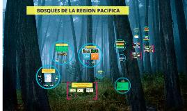 Copy of  VEGETACION DE LA REGION PACIFICA