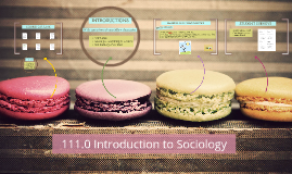 Copy of 111.0 Introduction to Sociology