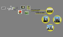 Copy of урок английского языка на свободную тему