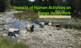 Impacts of Human Activities on Rouge Valley Park