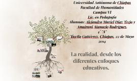 La realidad educativa, desde los diferentes enfoques educati
