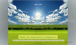 REDES DE EMPRESARIOS CAMPESINOS