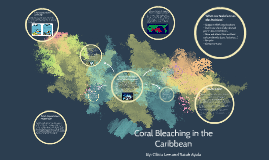 Coral Bleaching in the Caribbean