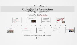 Colegio La Asunción