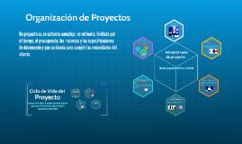 Organización de Proyectos
