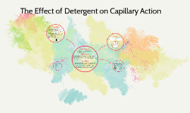 The Effect of Detergent on Capillary Action