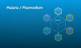 Malaria / Plasmodium