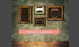 Copy of 2.1 sociedad, estructura y cambio social