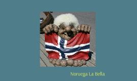 Juan el  coordinador noruego