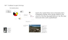 Copy of The Ojibwa Medicine Wheel