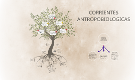 CORRIENTES ANTROPOBIOLOGICAS
