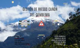 GESTIÓN DE RIESGO CAÑÓN DEL COMBEIMA