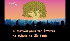10 motivos para ter árvores na cidade de São Paulo