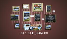 1617124 E.URANGOO