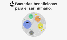 Bacterias beneficiosas