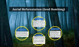 Copy of Aerial Reforestation (Seed Bombing)
