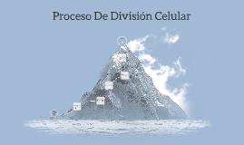 Proceso De División Celular