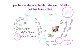 Copy of Importancia de la actividad del gen MDR1 en células tumorales