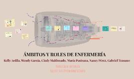 ÁMBITOS Y ROLES DE ENFERMERÍA
