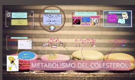 Copy of METABOLISMO DEL COLESTEROL