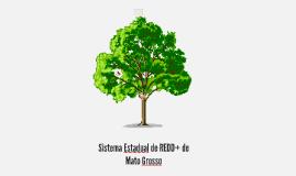 Sistema Estadual de REDD+