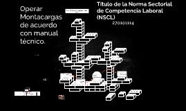 Título de la Norma Sectorial de Competencia Laboral (NSCL)