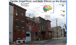 Opium, Angel Dust, and Meth Effects on the Brain