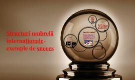 Structuri umbrelă internaționale-exemple de succes